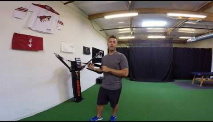 Upper Body -  Assisted Lunge with Shoulder Flexion